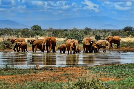 9 Nights South Africa with a Twist tour