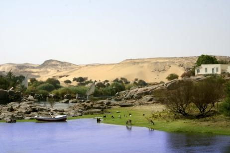 Budget Nile River Cruise & Sightseeing tour