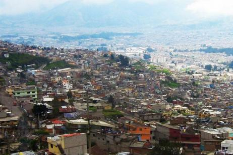 Ecuador Nature Tour |Andes Highlights&Upper Amazon Basin