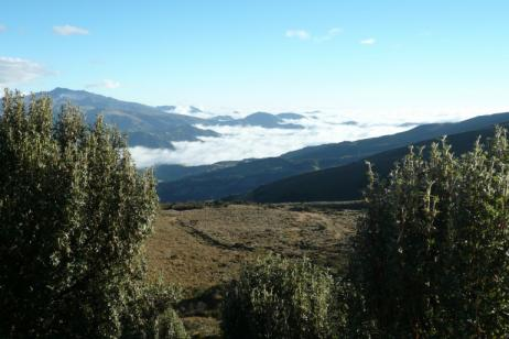 Jewels of the Andes |  Volcanoes Avenue