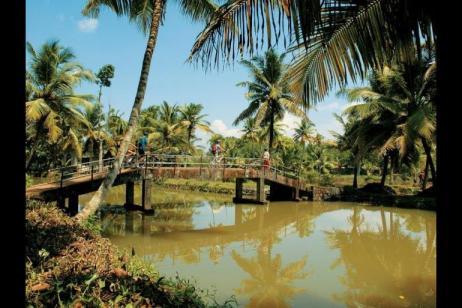Backroads Of Kerala