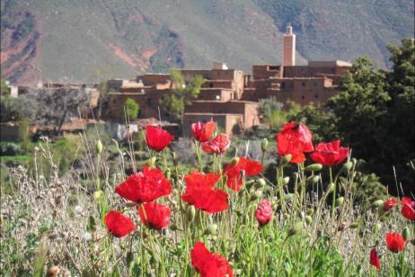 Morocco Fitness Week