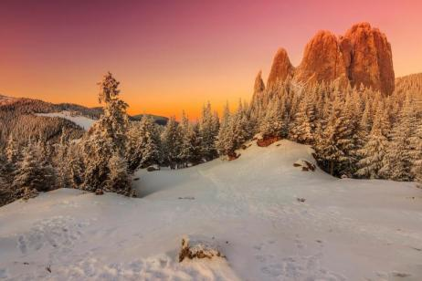 Transylvania Winter Walk & Snowshoe
