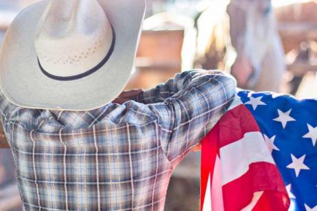 Wild West Cowboys and Buffalos end Denver Summer 2018