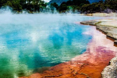 Rotorua Discovery summer 2018