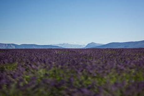 Burgundy & Provence  Southbound