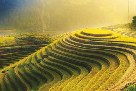 Vietnam Uncovered