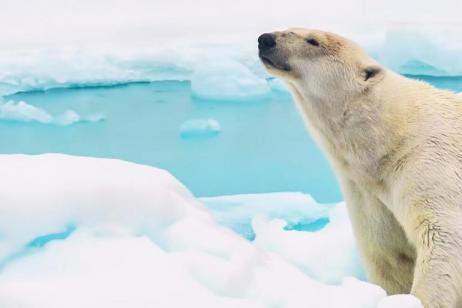 Northwest Passage High Arctic, Villages and Icebergs