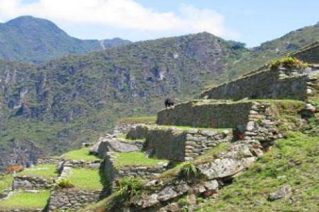 Galápagos Highlights & Peru with Ecuador's Amazon & Peru's Amazon