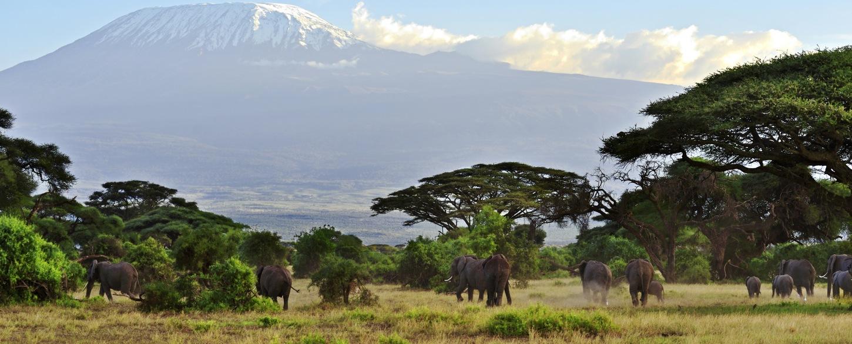Top Tanzania tour attraction, Mount Kilimanjaro
