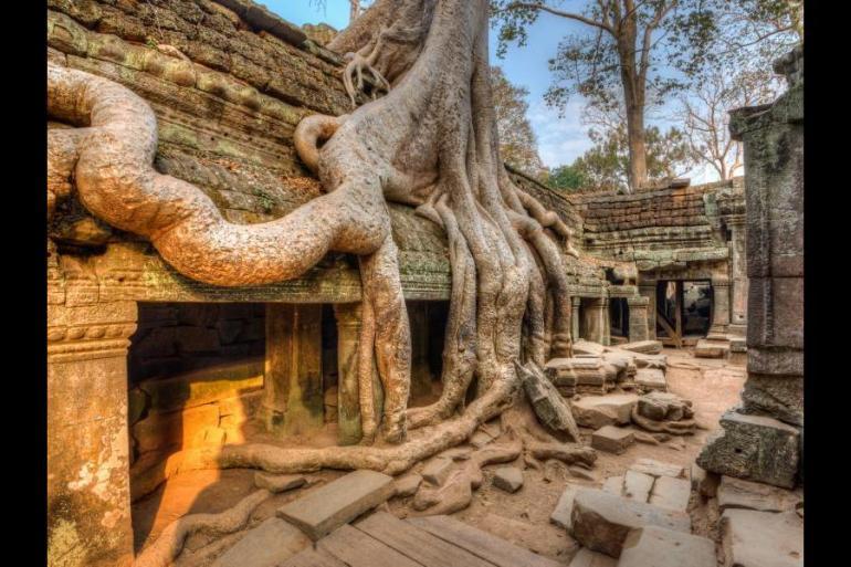 Ho Chi Minh Siem Reap Mekong Delta and Angkor Trip