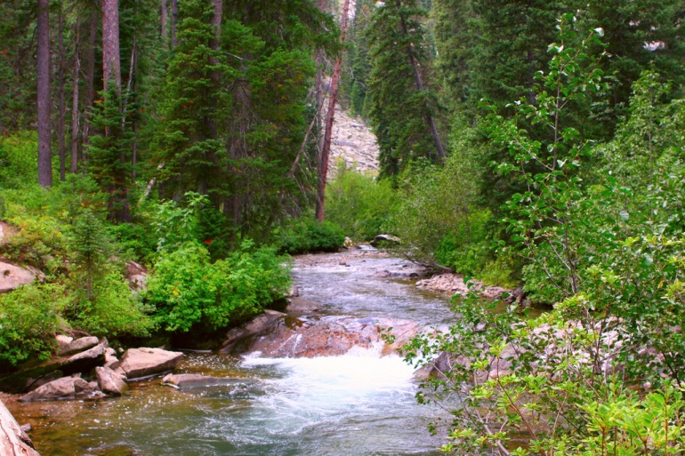 Grand Tetons Idaho Mt Rushmore, Grand Tetons & Yellowstone Trip