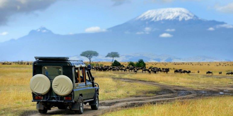 Game drive in Tanzania
