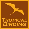 tropical birding logo