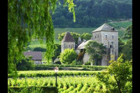 Self-Guided Cycling Burgundy tour