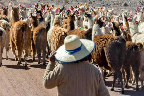 San Pedro de Atacama Experience - Independent tour