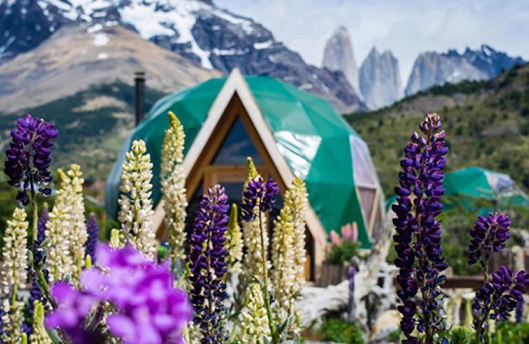EcoCamp Patagonia Wildlife Safari tour