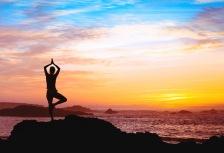 Yoga, Meditation & Wellness