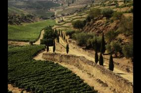 Walks and Wine Tasting in Spain and Portugal