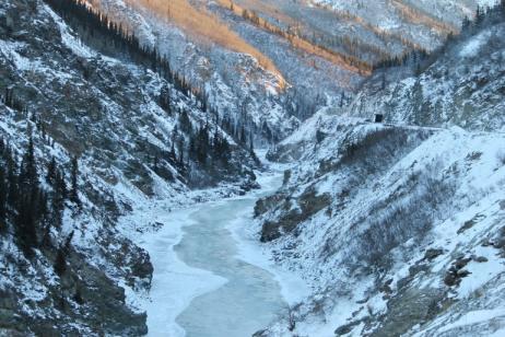 Majestic Alaska with Cruise Verandah Stateroom tour