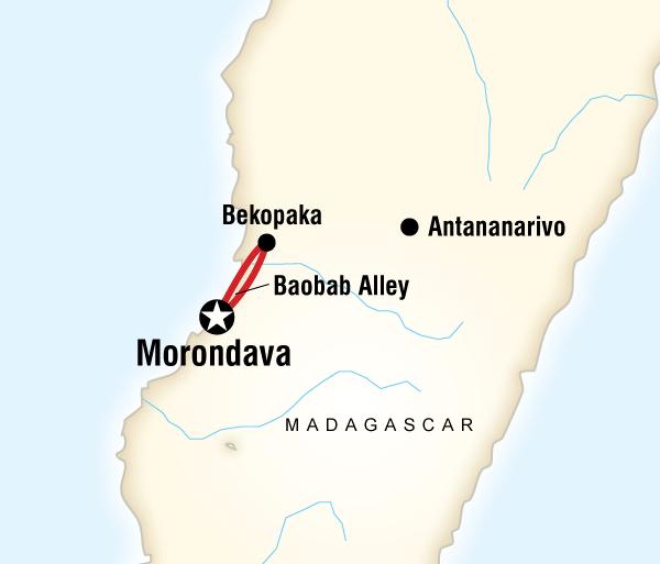 Cultural Homestays & Cultural Immersion Madagascar - Baobab & Tsingy Explorer package