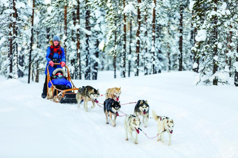 Cultural Culture The Northern Lights of Finland  package