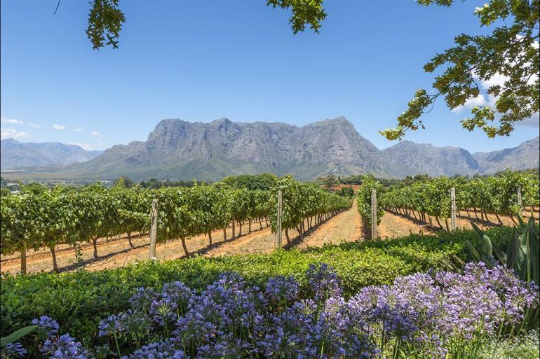 Cape Town Durban Kruger, Coast & Cape Trip