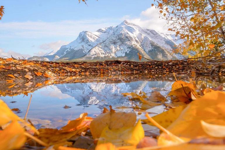 Spectacular Canadian Rockies with Rocky Mountaineer Silverleaf and Alaska Cruise Ocean-view Stateroom tour
