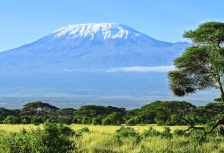 Mt. Kilimanjaro tour