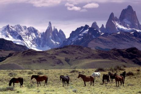 Incredible Patagonia (& Buenos Aires) tour