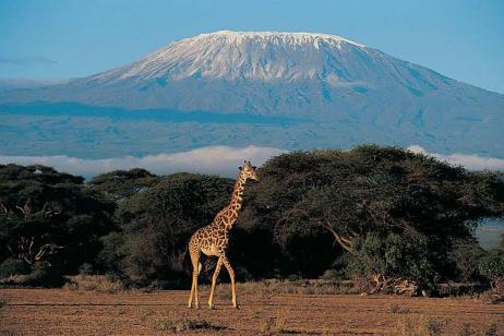Cycle Kilimanjaro tour