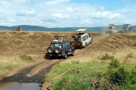 7 Days - 6 Nights Lodge And Camping Luxury Safaris. tour