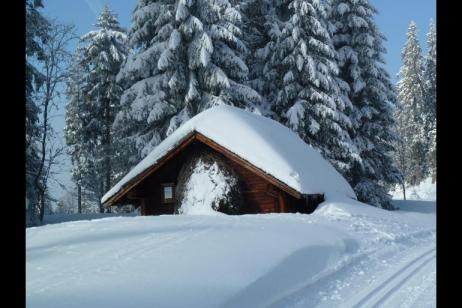 Black Forest Cross-country Ski Tour tour