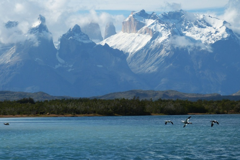 Birds flying on Torres Del Paine - Patagonia- Chile-675737-p