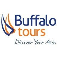 Buffalo Tours