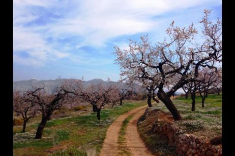 Self-Guided Walking in the Sierra de Aitana tour