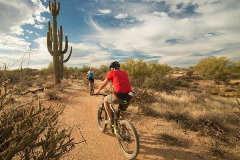 Arizona's Sonoran Desert 4 Day/3 Night Trip tour