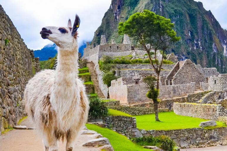 Peru Custom Tours tour