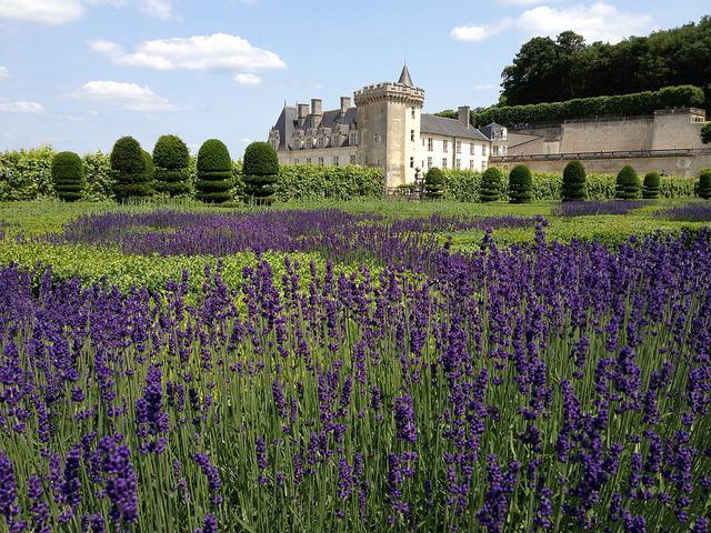 Loire Valley Family Adventure tour