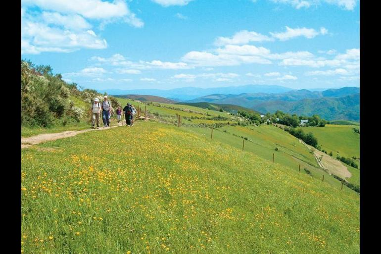 Education / Learning Educational/ learning Camino De Santiago package