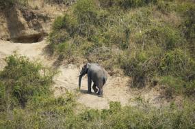 18 Days Wildlife And Nature Adventure Safari