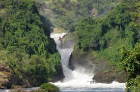 9 Days Uganda Primate And Wildlife Adventure Safari