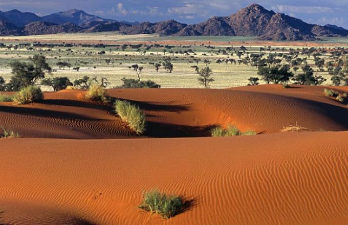 Cape Desert Safari (Northbound) tour