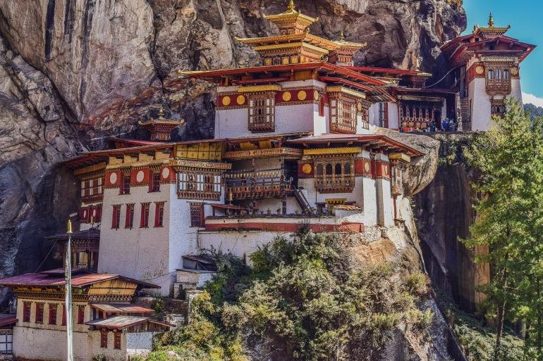 Tigger nest-Bhutan-2691190-P