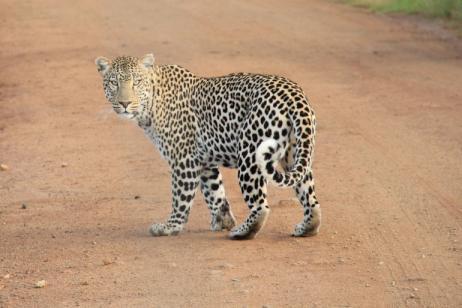 Tanzania Adventure tour