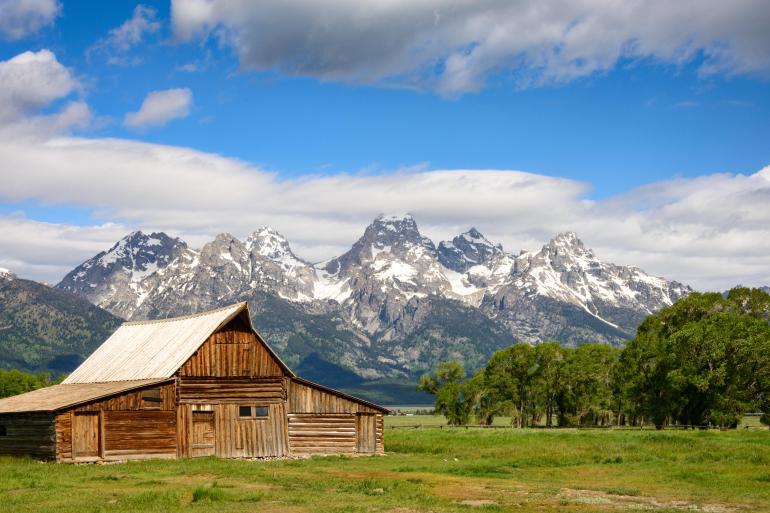 Grand Tetons Yellowstone National Park America's Cowboy Country  Trip