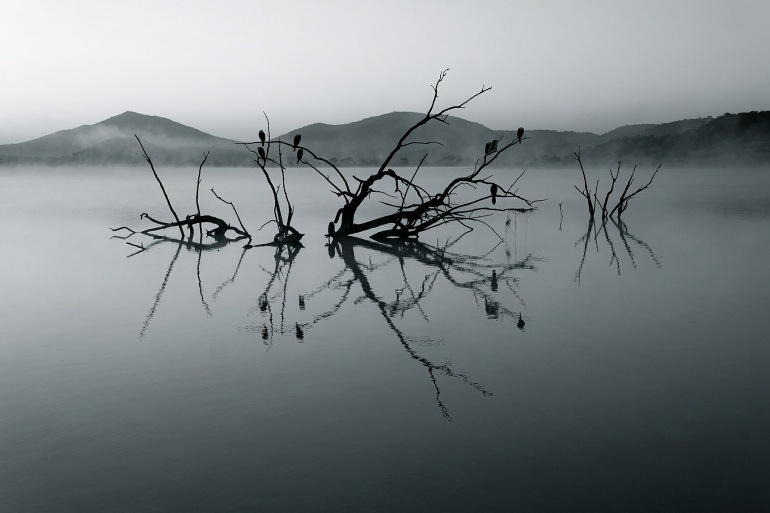 Lake view of South Africa