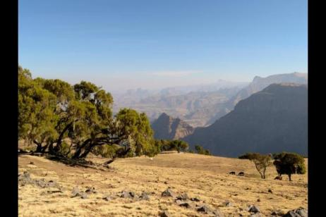 Simien Mountain Trek and Lalibela tour
