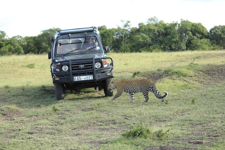 Wilderness View of Masai Mara Safari, Kenya