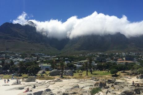 Cape Town & The Magical Mystery Safari tour